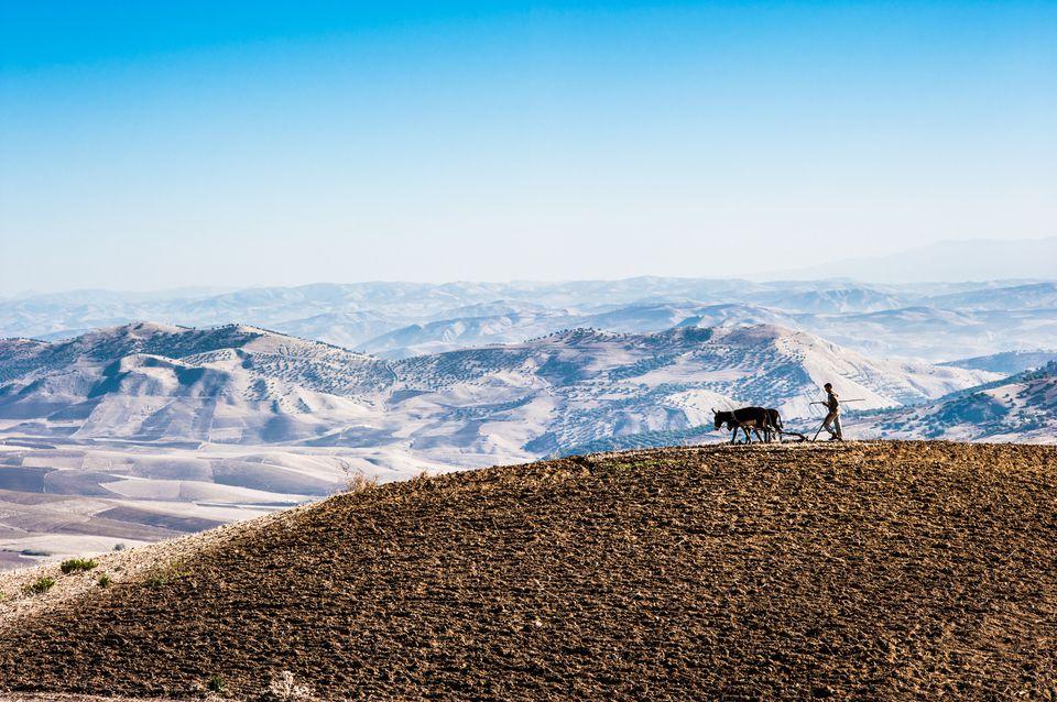 Montagnes de l'Atlas enneigées