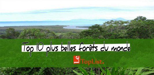 Top 10 plus belles forêts du monde