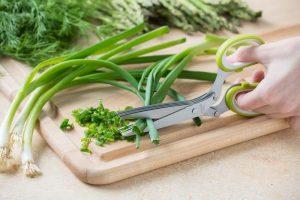 Ciseaux d'herbe de 5 lames