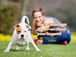 Top 10 avantages pour la santé d'avoir un chien!